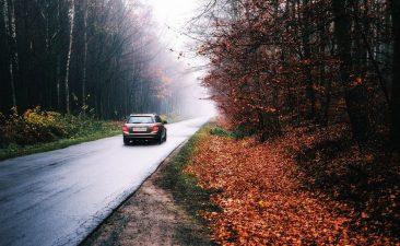 auto herfst